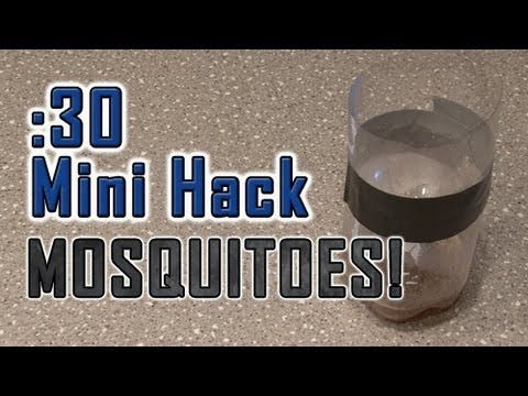 How To Get Rid of PESKY MOSQUITOES!