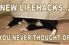 New Lifehacks You Never Thought Of!