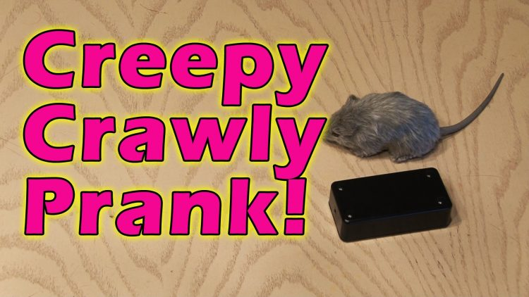 Creepy Crawly Prank!